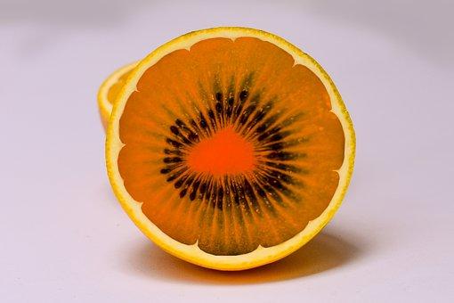 Kiwi, Orange, Mounting Fruit
