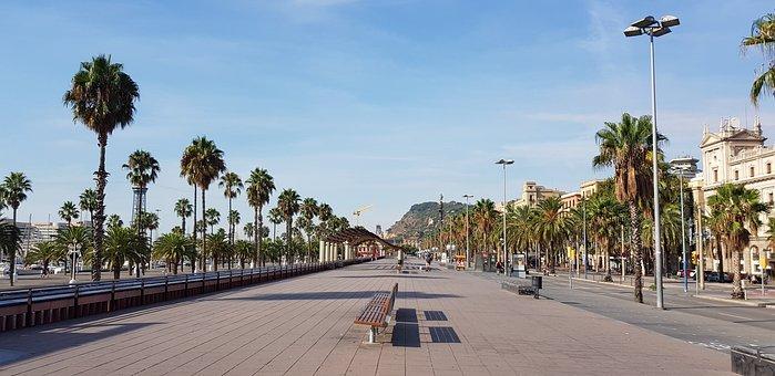 Barcelona, Nature, Beach, Spain