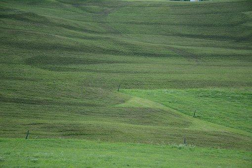 Prato, Grass, South Tyrol, Velvet