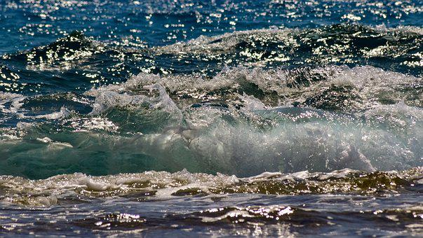 Wave, Water, Nature, Sea, Sparkle, Sunlight, Sunshine
