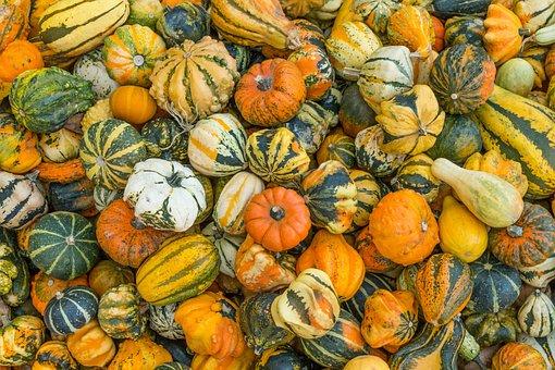 Pumpkins, Autumn Colors, Autumn, Colorful, Pumpkin