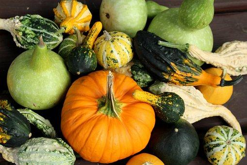 Pumpkins, Ornamental Pumpkins, Collections, Autumn