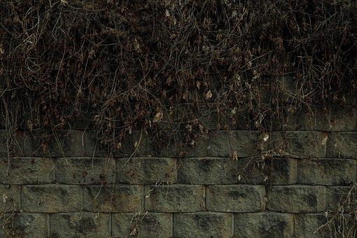 Wall, Damme, Stone Wall, Background, Stone, Brick