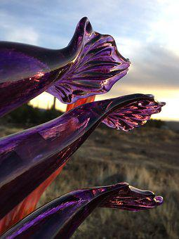 Art, Glass, Sunrise, Purple, Fins, Reflection