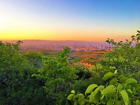 City, Panoramic, Horizon, Greens, Nature, Sky