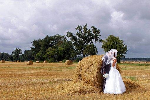 Wedding, Autumn, Field, Bride, Love, Nature, Couple