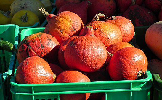 Vegetables, Pumpkins, Autumn, Decorative, Halloween