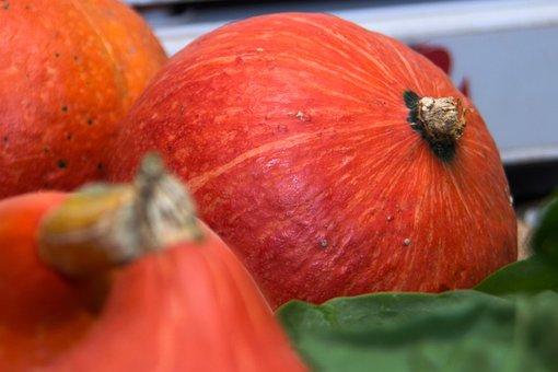 Pumpkin, Vegetables, Food, Healthy, Agriculture
