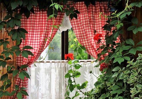 Window, Pane, Foliage, Overgrown, Wrastający