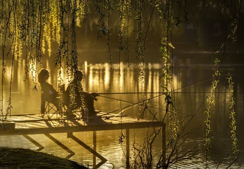 Sunset, Lake, Anglers, Nature, Trees, Light, Colors