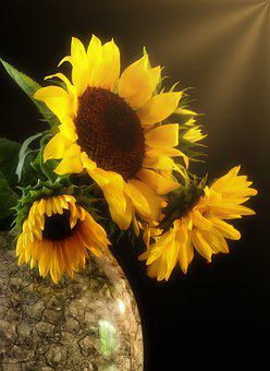 Sunflower, Bouquet, Flowers, Yellow, Vase, Autumn