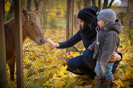 Kids, People, Baby, Autumn, Horse, Pony, Nature, Love