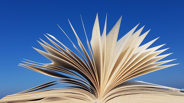 Book, Book Open, Book Pages, Wind, Read, Sky, Blue