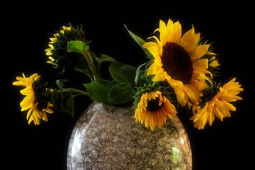 Sunflower, Vase, Bouquet, Yellow, Flowers, Decoration