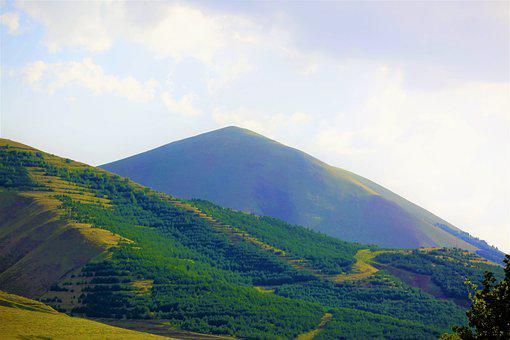 Mountain, Forest, Taylor, Summit, High, Horizon