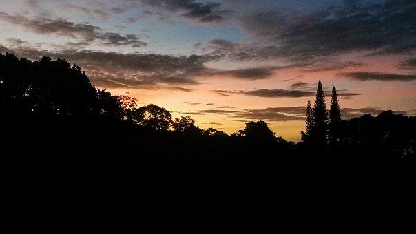 Morning, Awakening, Clouds, Landscape, Sunrise, Tree