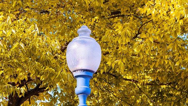 Light, Bulb, Lamp, Energy, Bright, Shining, Inspiration