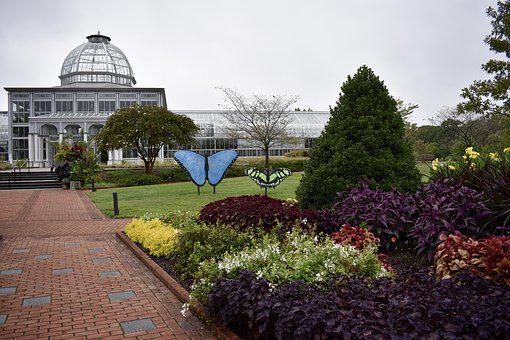Gardens, Botanical, Observatory, Nature, Plant, Flora