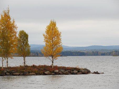 Nature, Yellow, Lake, Water, Cloudy, Fall Colors