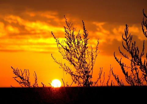 Lift, Sun, Nature, Landscape, Sky, Reflection, Color