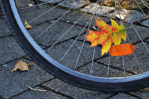 Bike, Spokes, Orange, In The Fall, Leaf, In The Shadows