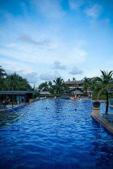 Pool, Swimming Pool, Swim, Water, Swimming, Summer