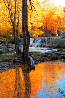Waterfall, Fall, Trees, River, Nature, Water, Landscape