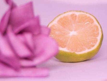 Rose, Lemon, Pink, Lens, Citron, Couleur Rose