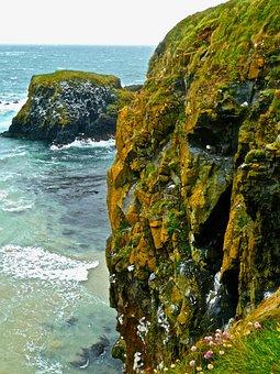 Cliff, Sea, Windswept, Dramatic, Coast, Seascape, Rocks