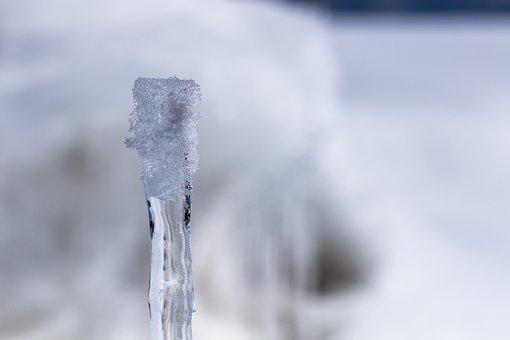 Snow, Ice, Winter, White, Cold