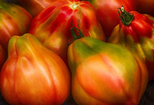 Tomatoes, Red, Food, Fresh, Healthy, Vegetables