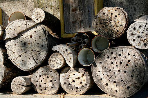 Bee Hotel, Insect, Bees, Insect House, Insect Box, Wood