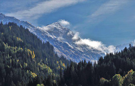 Mountains, First Snow, The Height Of The, Forest
