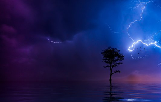 Lightning, Tree, Silhouette, Ocean, Lake, Water, Still