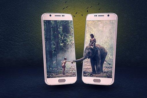 Manipulation, Elephant, Animal, Phone, Boy, Jungle