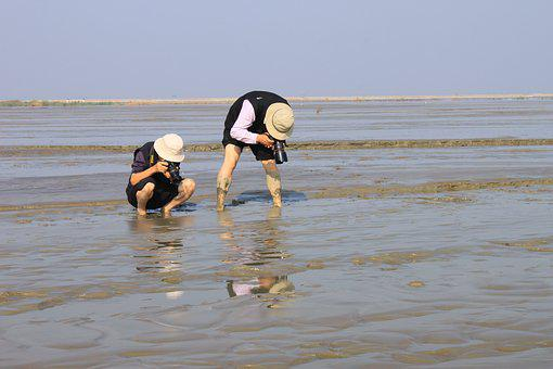 Photography, Photographers, Shooting, Photographer