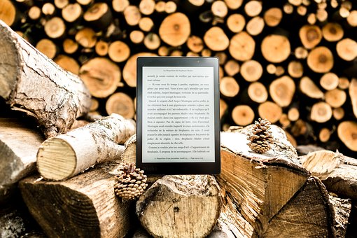 Tree, Logs, Wood, Winter, Fall, Reading Light, Book