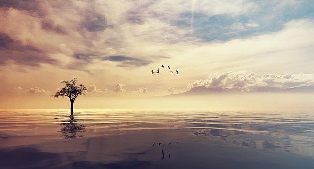Tranquil, Ocean, Sea, Clouds, Sky, Meditate, Zen, Relax