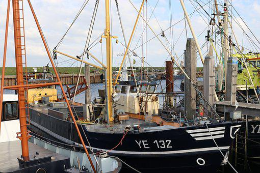 Port, Yerseke, Holland, Fishing Vessel, Maritime, Ships