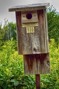 Birdhouse, Audubon Society, Martin, Bird, Wood, Nature