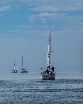 Sail, Sailing Boat, Wind, Water, Lake Constance, Active