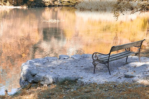 Autumn, Bank, Nature, Park, Rest, Lake, Bench, Out