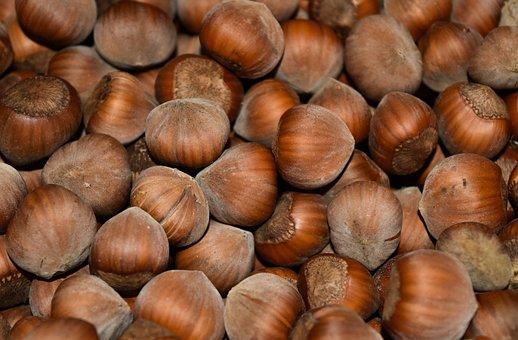 Nuts, Hazelnuts, Hazel, Food, Walnut, Bowls, Brown