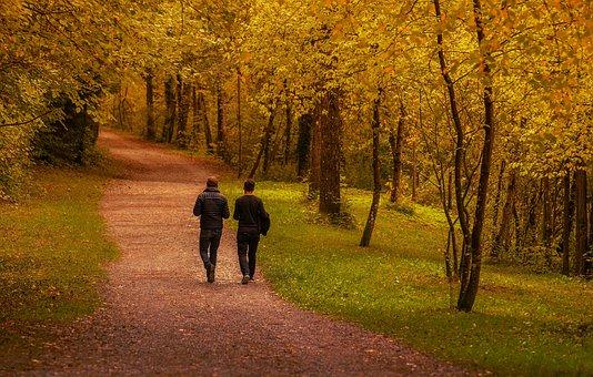 Human, Friends, Men, Portrait, Forest, Together, Active