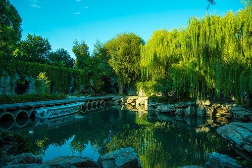 Garden, Pond, Chinese Style