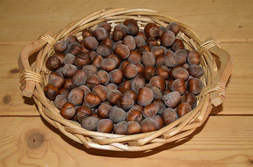 Hazelnuts, Nuts, Hazel, Walnut, Bowls, Basket, Fruits