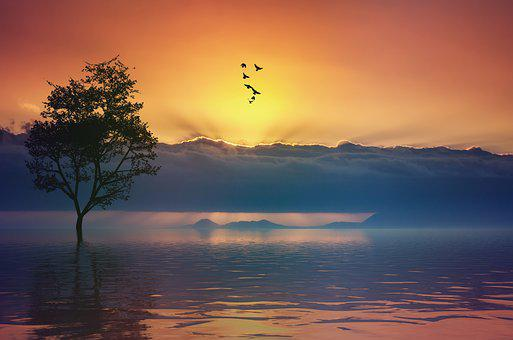 Still, Calm, Tranquil, Sunset, Sky, Ocean, Lake, Water