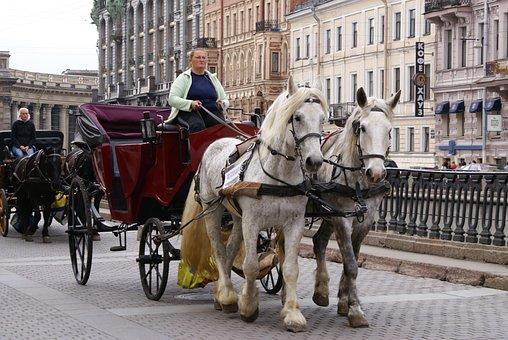 Coach, Horse, St Petersburg Russia