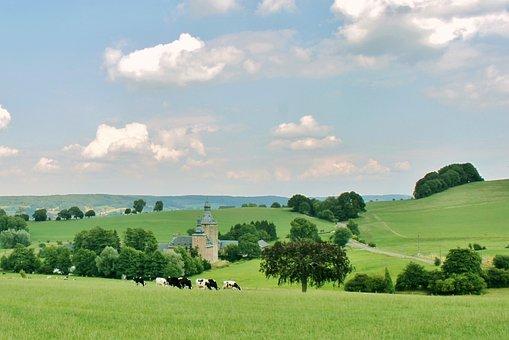 Landscape, Reported, Cows, Castle, Nature, Green, Sky