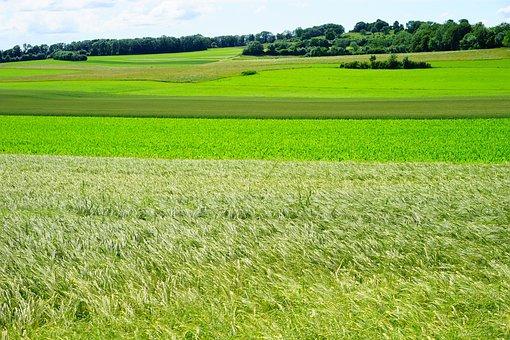 Breitenstein, Landscape, Nature, Idyll, Swabian Alb
